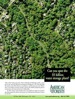 Ad conceived and written for American Forests that pitched the organization as a conservation leader.